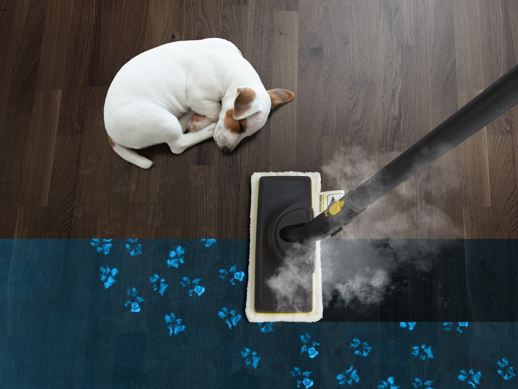 スチームクリーナー 「臭い・除菌対策に」 高温のスチーム(約100℃)で目に見えないバクテリアやウイルスを99.99%※ 除去します。ソファやカーペット、トイレ回りやゲージなどより清潔を保ちたい場所のお掃除や雑菌が繁殖する臭いの気になる場所に最適です。スチームの力で汚れを浮かせ、しっかり除菌します。洗剤不要で環境にやさしいクリーナーで床のお掃除にも使えます。 ※第三者機関調べ。ケルヒャースチームクリーナーをスチーム最大量モードで30秒間噴射するとウイルスを99.999%除去するという結果が出ました。ケルヒャーのスチームクリーナーを正しく使用すると、一般家庭のバクテリアを99.99%除菌することができます。(表面の硬い場所を清掃した場合)